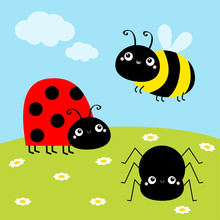 Bee Bumblebee, Spider, Ladybug Ladybird, Lady Bug. Insect Set. Green Grass Daisy Meadow, Sky With Clouds. Cute Cartoon Kawaii Animal Character. Flat Design. Baby Background.