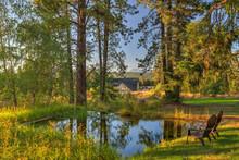 Luxury Cedar Cabin Home With L...