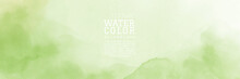 Abstract Hand Painted Light Green Nature Watercolor