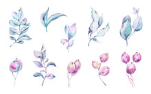 Watercolor Hand Painted Floral...