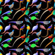 Bright Abstract Birds (pheasan...