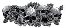 Monochromatic Human Skulls Wit...