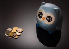 Light-blue Owl-money Box With ...