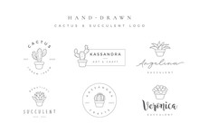 Minimalist Hand Drawn Cactus And Succulent Logo