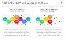 Full Spectrum Vs Broad Spectrum Horizontal Business Infographic Illustration About Cannabis As Herbal Alternative Medicine And Chemical Therapy, Healthcare And Medical Vector.