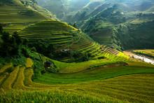 Landscape Rice Terraces At Sun...