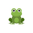 Frog. Flat color icon. Animal vector illustration