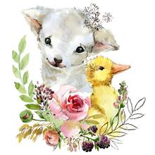 Cute Watercolor Cartoon Lamb. Farm Animal Illustration.