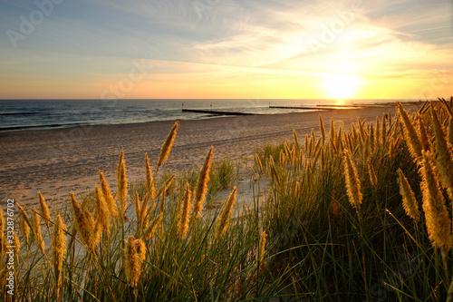 Fototapeta Morze Bałtyckie,wydmy na piaszczystej plaży w Kołobrzegu o wschodzie słońca. obraz