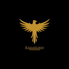 Golden Eagle With Black Backgr...