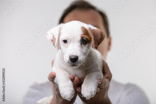 Obraz Man holds a puppy in his hands - fototapety do salonu