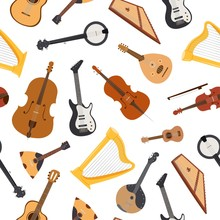 Stringed Musical Instrument Wi...