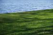canvas print picture - Grünstreifen mit Schatten am Wasser