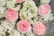 Pink White Floral Background, ...