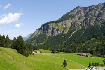 Alpen grünes Tal