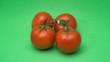 canvas print picture - Quatre tomates sur un arrière plan de couleur vert