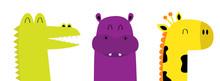 Hippopotamus Hippo Giraffe All...