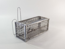 Cage Mouse Trap On White Background