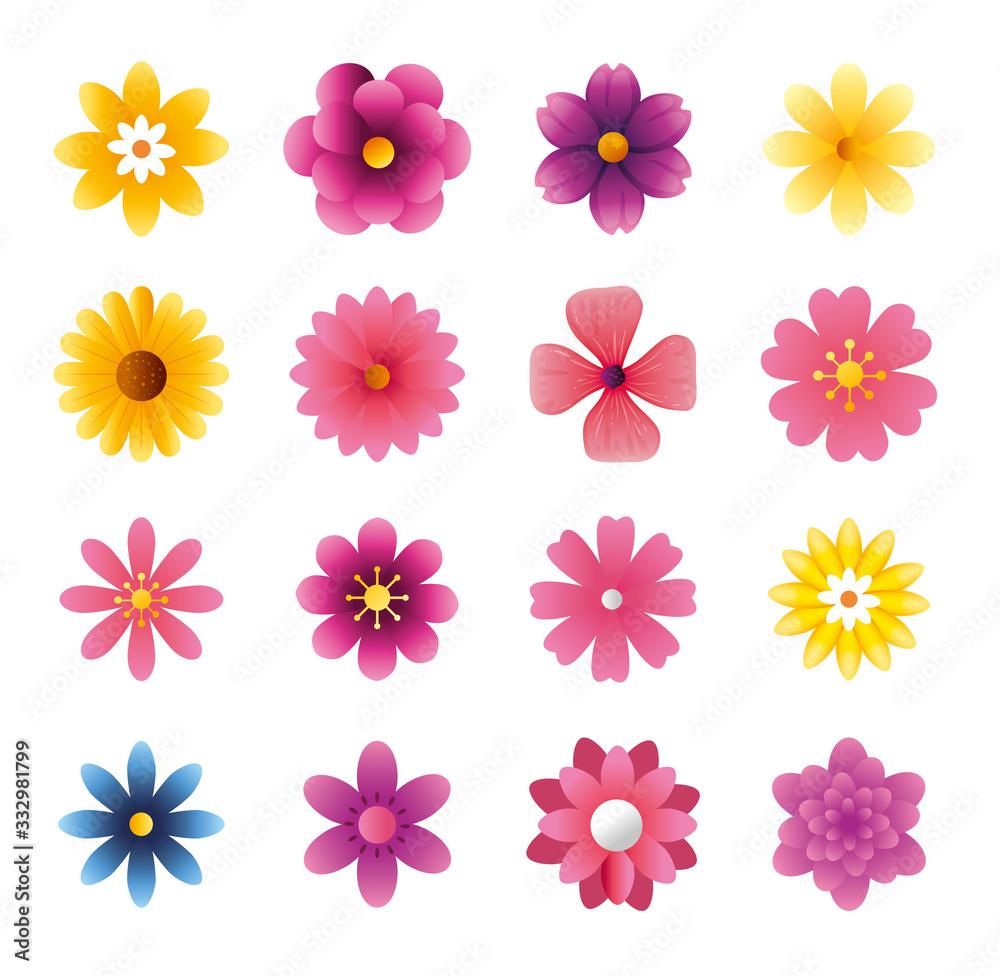 Fototapeta set of cute flowers naturals in white background vector illustration design
