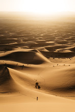Unrecognizable Tiny Person At Desert