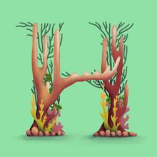 Coral Reef - H
