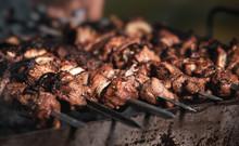 Grilling Shashlik On Barbecue ...