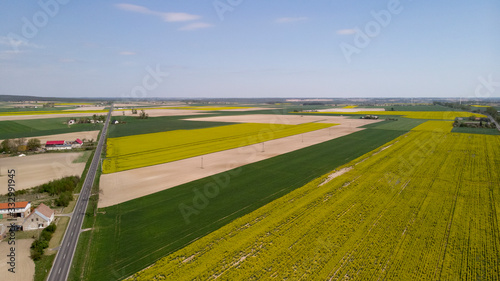 Farming fields near road and houses - 332991945