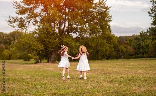 Tablou Canvas Little sisters walking in field