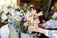 Hand Of Woman Arranging Flowers