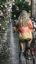 Beautiful Woman On A Bike