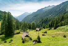 Valley In Ticino In Summer Wit...