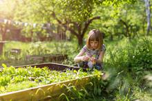 Cute Little Girl Enjoy Gardeni...