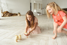 Girls Playing With Ducks For Easter
