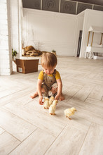 Boy Playing With Ducks For Easter