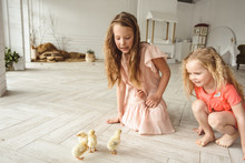 Kids Playing With Ducks For Ea...