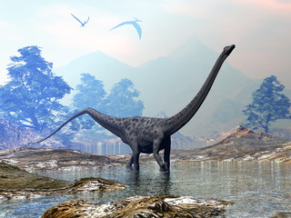 Diplodocus dinosaur walking peacefully in the water by sunset - 3D render