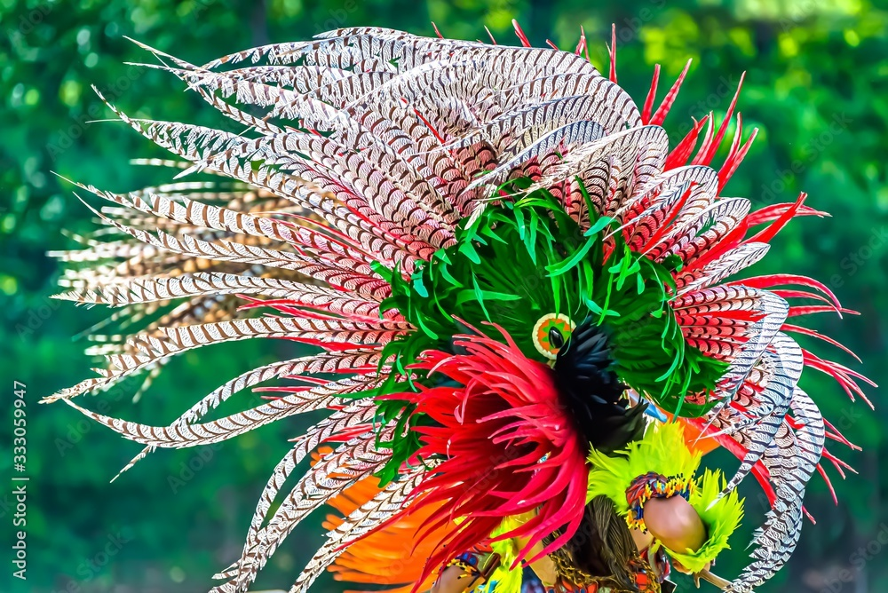 Fototapeta Closeup shot of the colorful feathers of a traditional Native Indian-American festive regalia