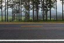 Asphalt Road Side View And Lan...
