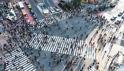 Obraz na plátně Shibuya crossing