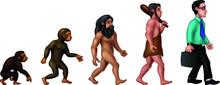 Cool Evolution Of Man Cartoon ...