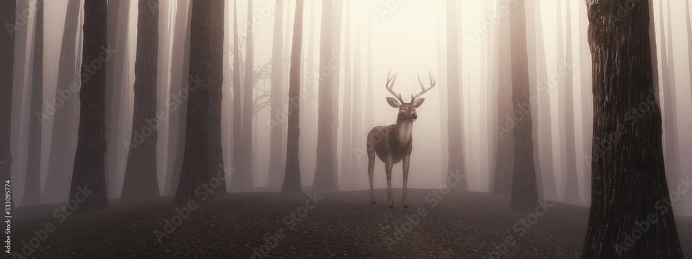 Fototapeta Deer foggy forest
