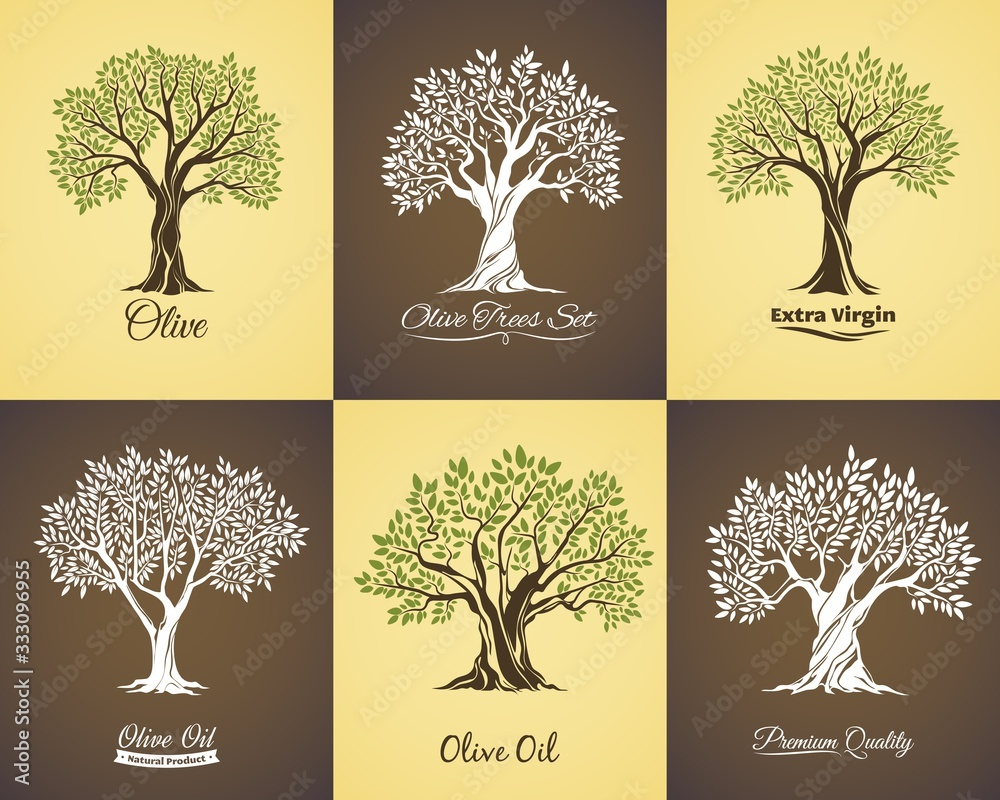 Fototapeta Olive tree vector icons of olive oil food labels and mediterranean plant symbols. Old trees with branches and green leaves, large crowns and trunks, Greek or Italian cuisine vegetarian product design