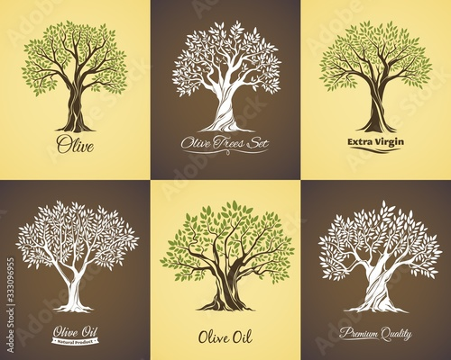 Fototapeta Olive tree vector icons of olive oil food labels and mediterranean plant symbols. Old trees with branches and green leaves, large crowns and trunks, Greek or Italian cuisine vegetarian product design obraz