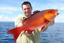 Deep Sea Fishing, Catch Of Fis...