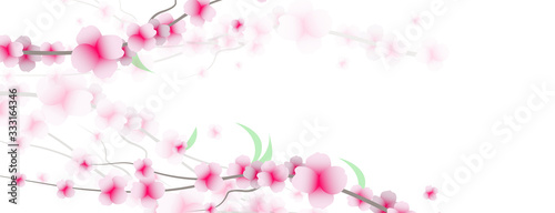 Fényképezés primavera, fiori, sakura, ciliegi,