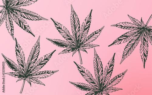 Vászonkép Line art marijuana cannabis leaves on purple background