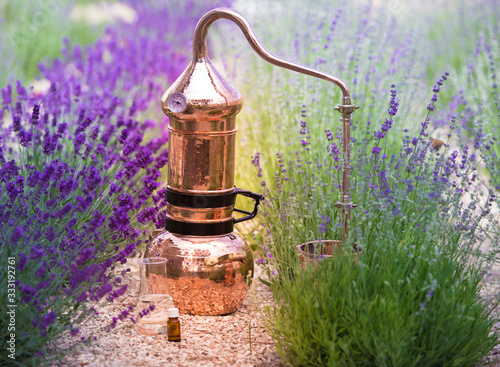 Distilling apparatus alembic with esential oil between of lavender field lines Canvas Print