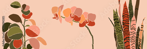 Art collage houseplant leaves and flowers in a minimal style. Silhouette of orchid, sansevieria and peperomia. Vector
