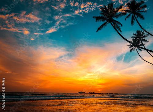 Fototapeta palms and hot tropical sunset obraz