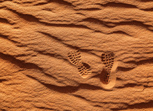 Shoe Prints On The Sand